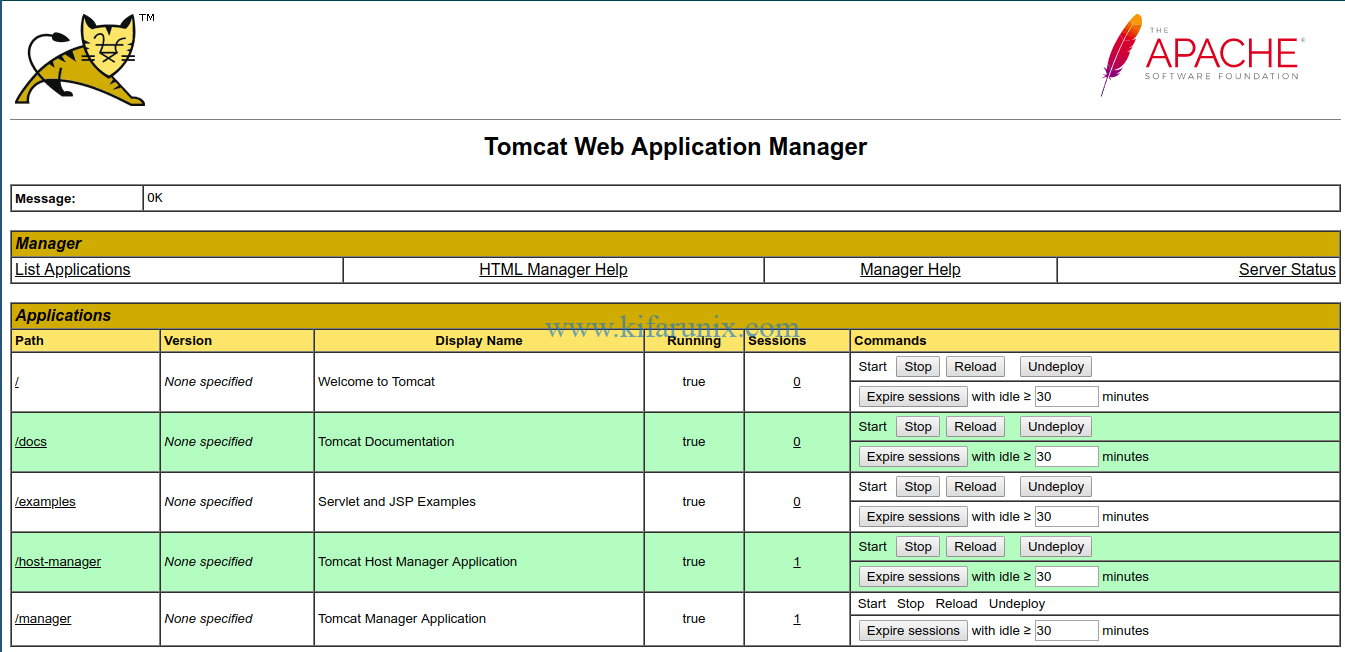 Tomcat 9 web application manager