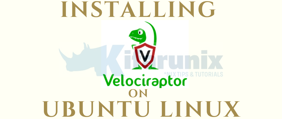 Install and Setup Velociraptor on Ubuntu 18.04