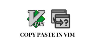 How to copy paste lines in vim
